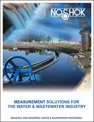 Measurement Solutions for the Water/ Wastewater Industry