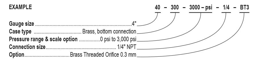 Glycerin Filled MEASUREMAN 2-1//2 dial Brass Inside Stainless Steel case 1//4NPT Lower 0-10psi//kpa