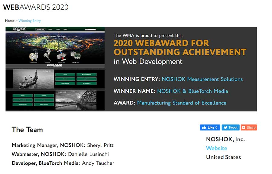 NOSHOK Is Awarded Manufacturing Standard Of Excellence Award For Website